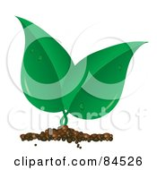 Royalty Free RF Clipart Illustration Of A Sprouting Green Leaf Plant With Dew by Pams Clipart