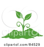 Royalty Free RF Clipart Illustration Of A Green Sprouting Plant In Soil by Pams Clipart #COLLC84529-0007