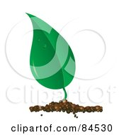 Royalty Free RF Clipart Illustration Of A Dewy Green Leaf Sprouting From Soil