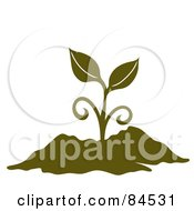 Royalty Free RF Clipart Illustration Of An Olive Green Sprouting Plant In Soil