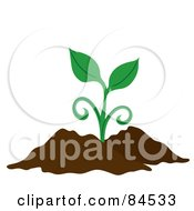 Royalty Free RF Clipart Illustration Of A Green Sprouting Plant In Dirt