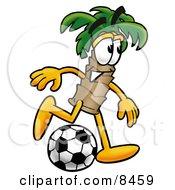 Palm Tree Mascot Cartoon Character Kicking A Soccer Ball