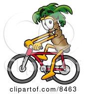 Palm Tree Mascot Cartoon Character Riding A Bicycle