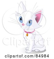 Cute White Cat With Blue Eyes And Pink Ears Wearing A Pink Collar