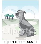 Royalty Free RF Clipart Illustration Of A Sitting Schnauzer Dog On A Hilly Landscape Path by David Rey