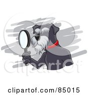 Royalty Free RF Clipart Illustration Of A Detective Schnauzer Dog Using A Magnifying Glass by David Rey