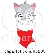 Royalty Free RF Clipart Illustration Of A Gray And White Kitten Inside A Christmas Stocking by yayayoyo