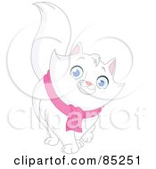 Friendly White Long Haired Cat Wearing A Pink Scarf