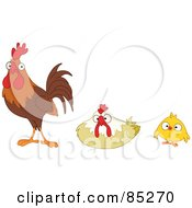 Digital Collage Of A Bird Family A Rooster Hen And Chick