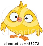 Surprised Yellow Chick