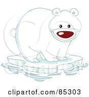 Happy Polar Bear On A Sheet Of Ice In The Arctic
