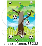 Soccer Balls Below And Hanging From A Tree In A Hilly Landscape