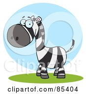 Cute Zebra On Grass