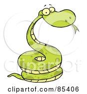Green Happy Viper