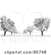 Avenue Of Bare 3d Trees In The Snow