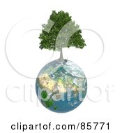Royalty Free RF Clipart Illustration Of A 3d Tree Growing From On Top Of The Earth by Mopic