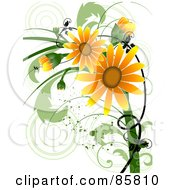 Orange Floral Grunge Daisy Design