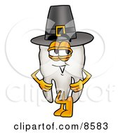 Clipart Picture Of A Tooth Mascot Cartoon Character Wearing A Pilgrim Hat On Thanksgiving by Toons4Biz