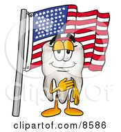 Tooth Mascot Cartoon Character Pledging Allegiance To An American Flag