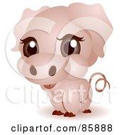 Poster, Art Print Of Adorable Big Head Baby Piggy