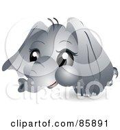 Poster, Art Print Of Adorable Big Head Baby Elephant