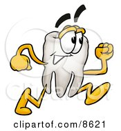 Clipart Picture Of A Tooth Mascot Cartoon Character Running