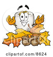 Clipart Picture Of A Tooth Mascot Cartoon Character With Autumn Leaves And Acorns In The Fall by Toons4Biz