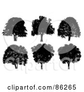 Royalty Free RF Clipart Illustration Of A Digital Collage Of Six Silhouetted Black Trees On White by Mopic