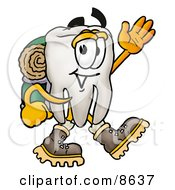 Clipart Picture Of A Tooth Mascot Cartoon Character Hiking And Carrying A Backpack by Toons4Biz