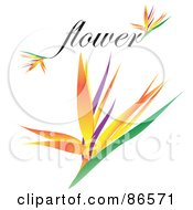 Royalty Free RF Clipart Illustration Of A Bird Of Paradise Flower With The Word Flower by Arena Creative