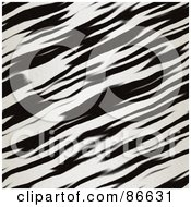 Royalty Free RF Clipart Illustration Of A Diagonal Zebra Print Background by Arena Creative