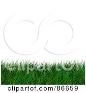 Royalty Free RF Clipart Illustration Of A Lower Border Of Grass Over White