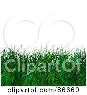 Royalty Free RF Clipart Illustration Of A Lower Border Of Long Green Grass Over White