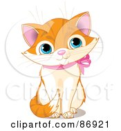 Cute Marmalade Kitten With A Pink Ribbon Collar