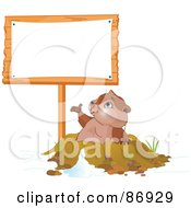 Royalty Free RF Clipart Illustration Of A Cute Groundhog Emerging From His Den And Presenting A Blank Sign Post by Pushkin