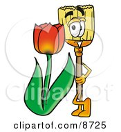 Broom Mascot Cartoon Character With A Red Tulip Flower In The Spring