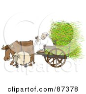 Cow And Sheep Pulling A Middle Eastern Man And Hay In A Cart