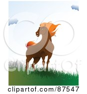 Royalty Free RF Clipart Illustration Of A Wild Brown Horse Standing On A Windy Hill