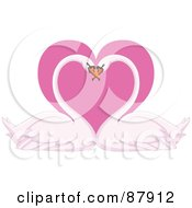 Romantic Swan Pair With Their Heads Together Over A Pink Heart