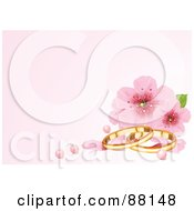 Pastel Pink Background With Cherry Blossoms Pearls And Wedding Rings