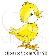 Royalty Free RF Clipart Illustration Of A Cute Yellow Chick With White Cheeks by Alex Bannykh