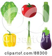 Digital Collage Of Romaine Lettuce A Tomato Zucchini Yellow Bell Pepper Green Onion And Purple Eggplant