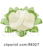 Royalty Free RF Clipart Illustration Of A Full Head Of Cauliflower
