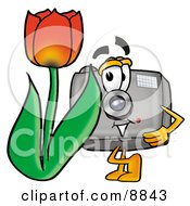 Camera Mascot Cartoon Character With A Red Tulip Flower In The Spring