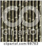 Bamboo Stalk Background Over Black