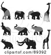 Digital Collage Of Elephant Mammoth And Giraffe Silhouettes