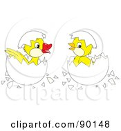 Royalty Free RF Clipart Illustration Of A Digital Collage Of A Hatching Duck And Chick