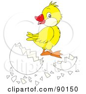 Royalty Free RF Clipart Illustration Of A Yellow Duckling By A Cracked Egg
