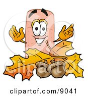 Bandaid Bandage Mascot Cartoon Character With Autumn Leaves And Acorns In The Fall