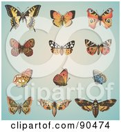 Royalty-Free (RF) Clipart Illustration of a Digital Collage Of Antique Styled Butterflies Over Blue by Anja Kaiser